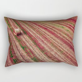 Aerial Rainbow Field Rectangular Pillow