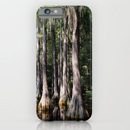 Florida Beauty 3 iPhone Case