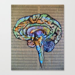Mapping the Brain Canvas Print