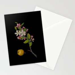 Pyrus Malus Mary Delany Delicate Paper Flower Collage Black Background Floral Botanical Stationery Cards