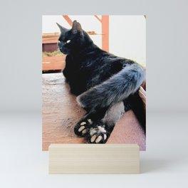 Toe Beans (Lanai Cat Sanctuary) Mini Art Print