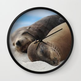 Galapagos Sea lions family sleeping on beach Wall Clock