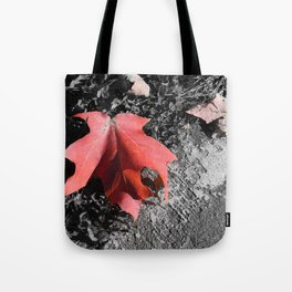 Something Fleeting Tote Bag