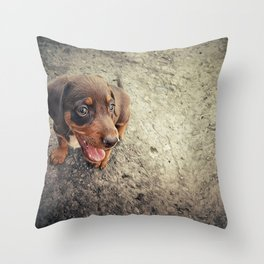 funny puppy Throw Pillow