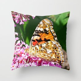 Painted Lady Butterfly 2 Throw Pillow