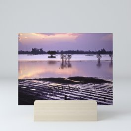 MEKONGDELTA in VIETNAM Mini Art Print