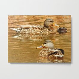 The girls hanging out Metal Print