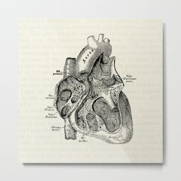 Vintage Anatomy Heart Medical Illustration Metal Print