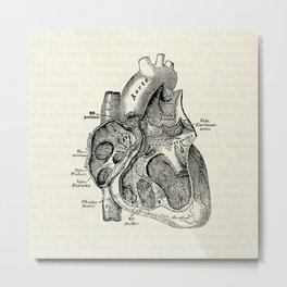 Vintage Anatomy Heart Medical Illustration Metal Print