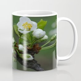 Plum tree flower buds 2 Coffee Mug