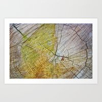 tree rings Art Prints featuring Tree rings by Nuria Talavera