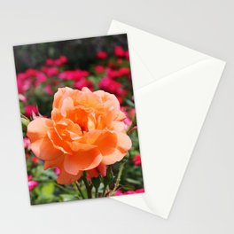 Beyond the Doors Stationery Cards