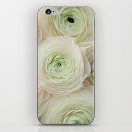 In Harmony iPhone Skin