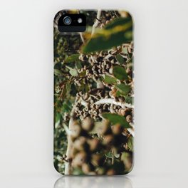 Gumtree 2 iPhone Case