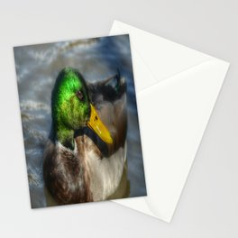 Magnifient Mallard Duck Stationery Cards