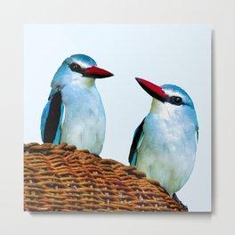 Woodland Kingfisher chit chat Metal Print