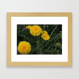 weedsonweeds Framed Art Print