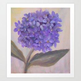 Purple Hydrangea From Original Oil Painting Art Print