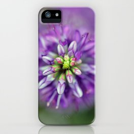 Hebe from above iPhone Case