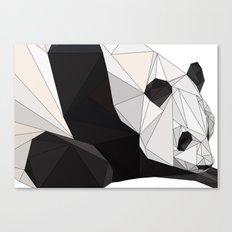pa Canvas Print