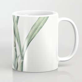 Victory onion  from Les liliacees (1805) by Pierre Joseph Redoute (1759-1840) Coffee Mug