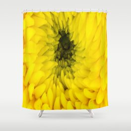 Fluffy Yellow Chrysanthemum Close-up  Shower Curtain