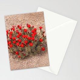 Sandia Cactus Flowers Stationery Cards