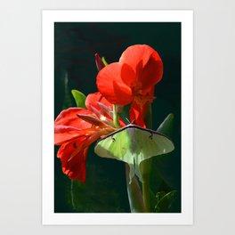 """Anticipation Of The Night"" - Luna moth Painting Art Print"