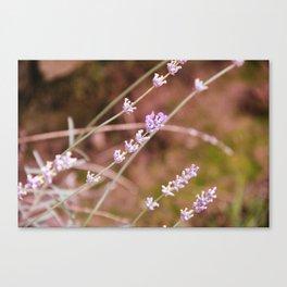 Art Of Flowers Canvas Print
