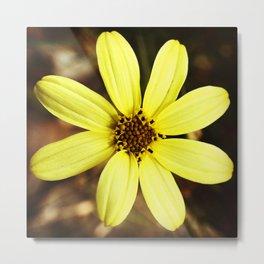 Yellow Flower Detail Metal Print