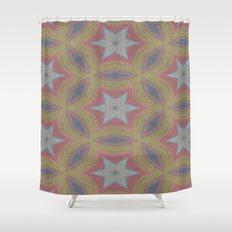 Ann Arbor chalk 6233 Shower Curtain