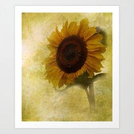 sun in your life Art Print