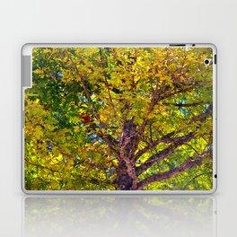 Spectacular View Laptop & iPad Skin