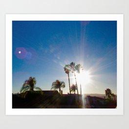 Afternoon Sun Art Print