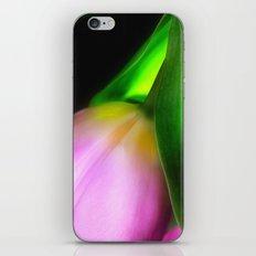 Pink pastel tulip iPhone & iPod Skin