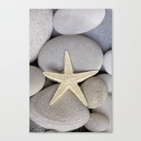 starfish Canvas Prints featuring Starfish by LebensART Photography