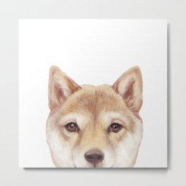 Shiba inu Dog illustration original painting print Metal Print