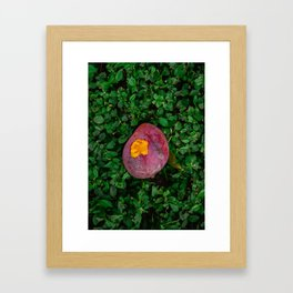 Rotten Beauty Framed Art Print