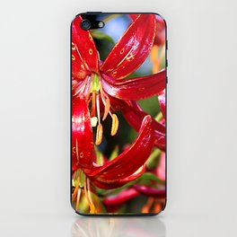 Vibrant Red Martagon Lily iPhone Skin