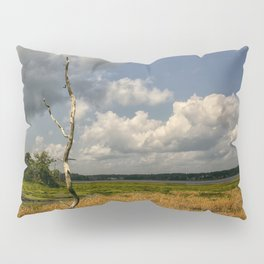 Salt Marsh Pillow Sham