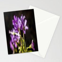 Springtime Blooms Stationery Cards