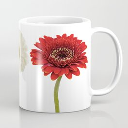 Three gerberas Coffee Mug