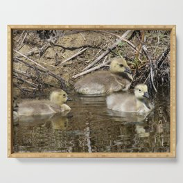 Goslings Serving Tray