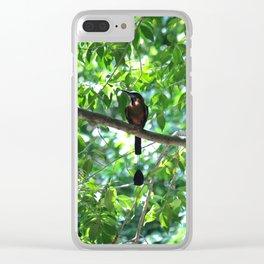 Cenote Squabbler Clear iPhone Case