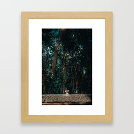 Simply Nature Framed Art Print