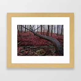 Honey Hollow Pond Framed Art Print