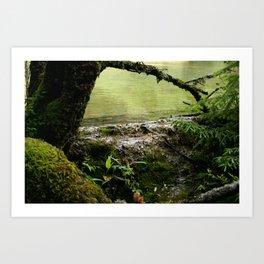 Green nature Art Print