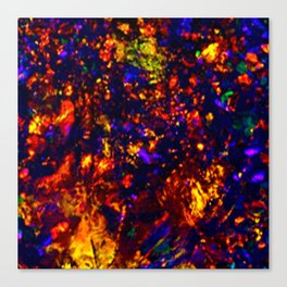 Angel Opal Canvas Print