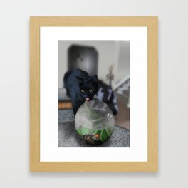 Black Kitty Cat with Fish in Fishbowl Framed Art Print