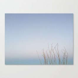 lone tree 3 Canvas Print